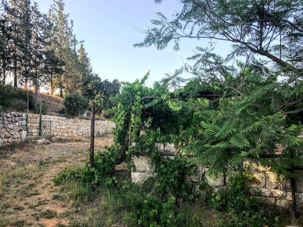 בתי אבן כליל אחוזת השחר צימר ווילה גליל