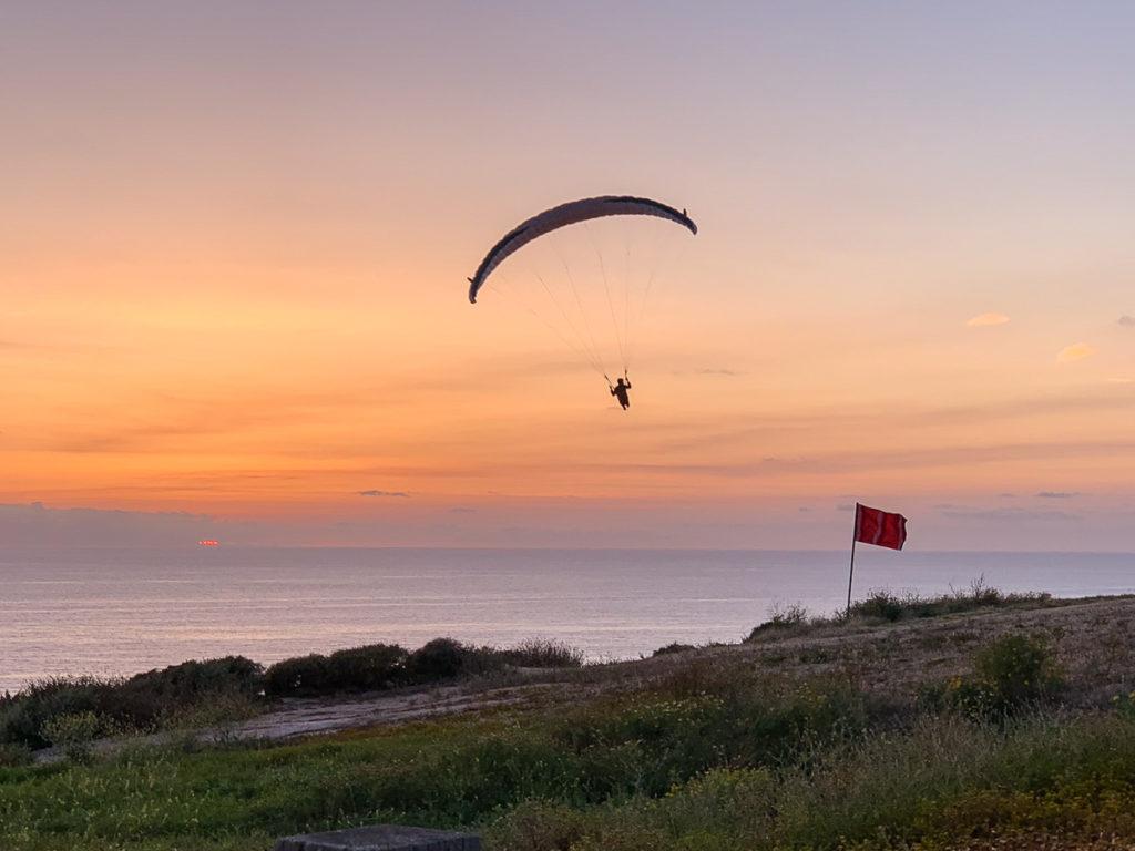 שמורת טורי פיינס. המלצות לחופשה בסן דייגו: באיזה מקומות כדאי לטייל, איפה כדאי לישון ומה כדאי לעשות בעיר הנופש שבקליפורניה