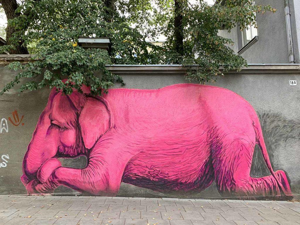 """קובנה: העיר הגי מגניבה בליטא. מה עושים ואיפה אוכלים במהלך סופ""""ש חופשה בעיר המזרח אירופאית. בתמונה: אמנות רחוב"""